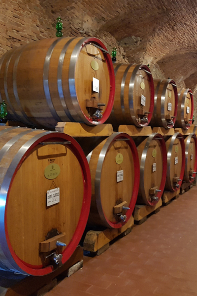 Private wine tours Florence